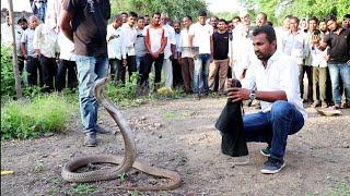 कुऐं से बाहर निकाला कोबरा सांप, पूरा वीडियो देखे Rescue Big indian cobra snake from kasar pimplgaon