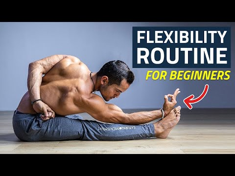 Daily Full Body Flexibility Routine Yoga Flow for Beginners (Follow Along)