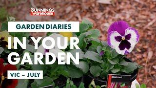 Gardening in July | VIC | Bunnings Garden Diary