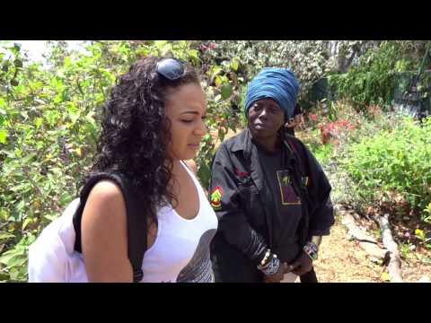 Interview about Butterflies & GMO
