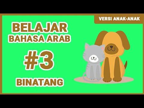 Belajar Bahasa Arab Binatang (Versi Anak-Anak)
