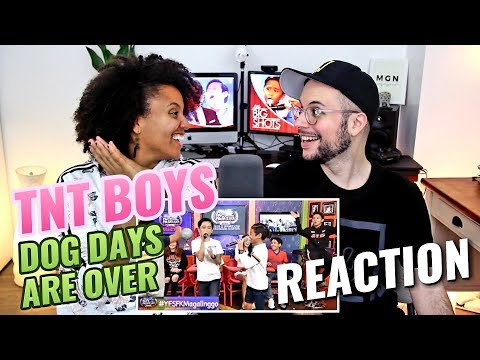 TNT boys  Dog Days Are Over  REACTION