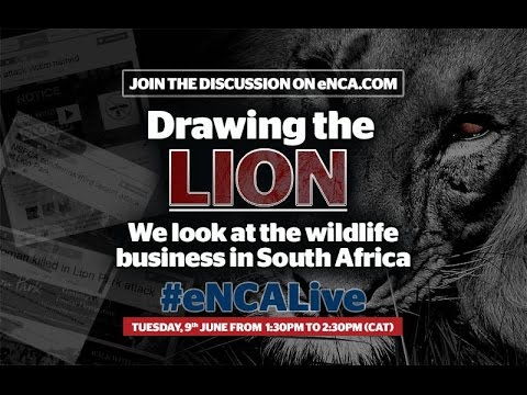 eNCALIVE: The business of wildlife in SA