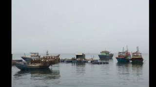 Biển Quê Nhà -Thơ phamphanlang - Nhạc Mộc Thiêng - Ca sĩ Diệu Hiền