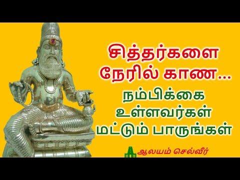 சித்தர்களை காண மந்திரம் | Siddhar Worship | Siddhar Vazhipadu