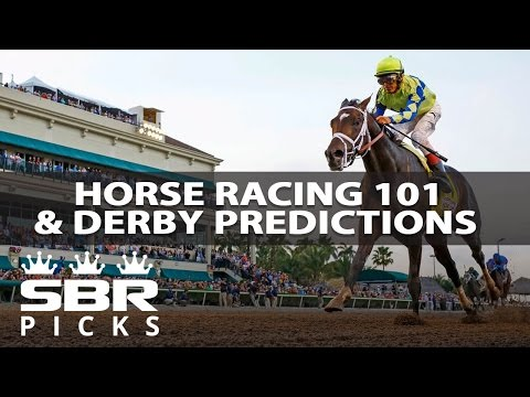 LIVE 2017 Kentucky Derby Preview & Predictions | Horse Racing Betting 101