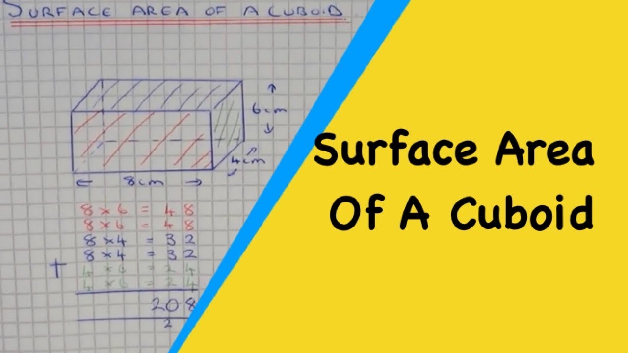 Surface Area Of A Cuboid How To Calculate The Total Surface Area Of A  Rectangular Prism