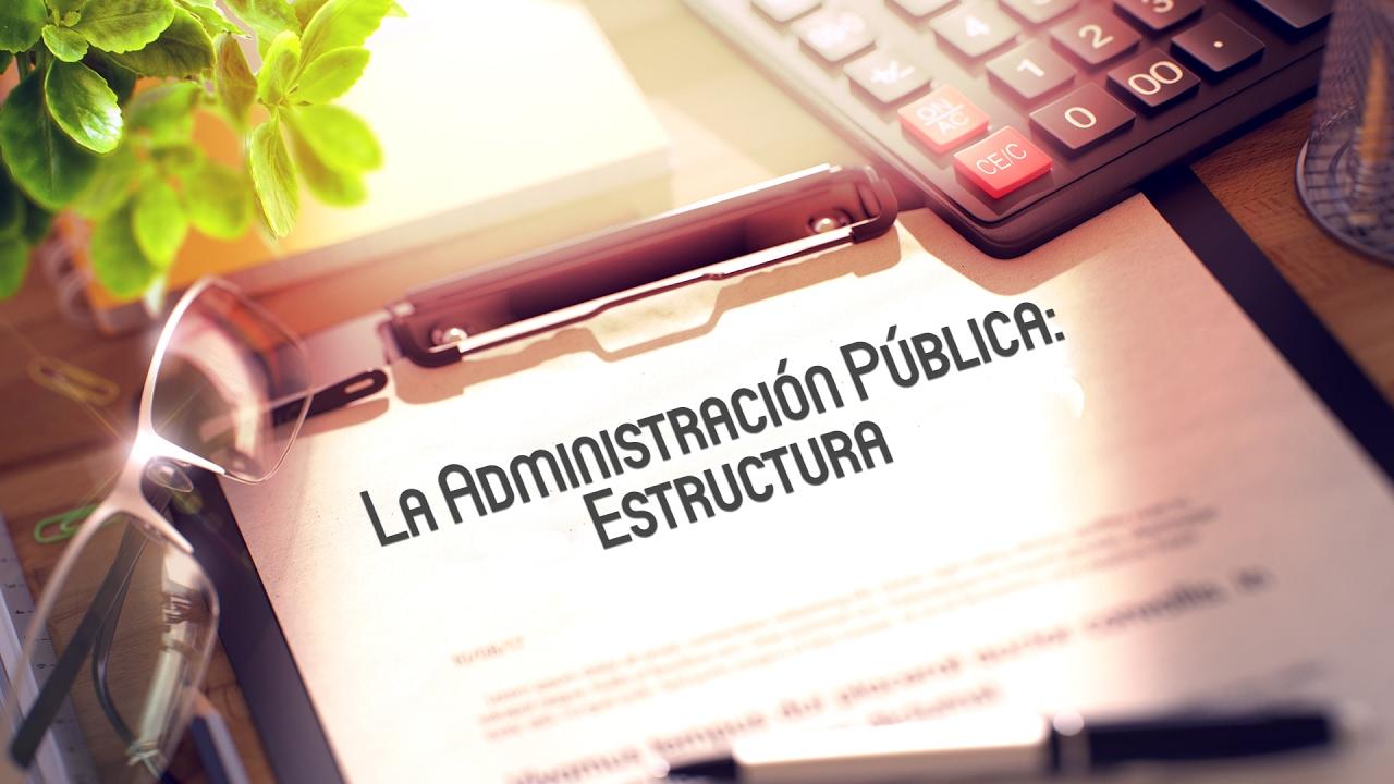 La Administración Pública Estructura Masterd
