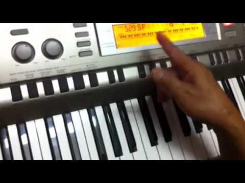 tu hoc Dan : organ