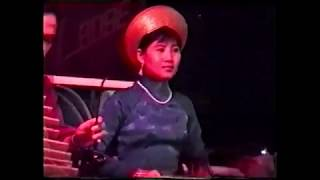 Rider in the Sky - Roady music from vietnam
