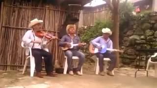 Trio huasteco de Hidalgo