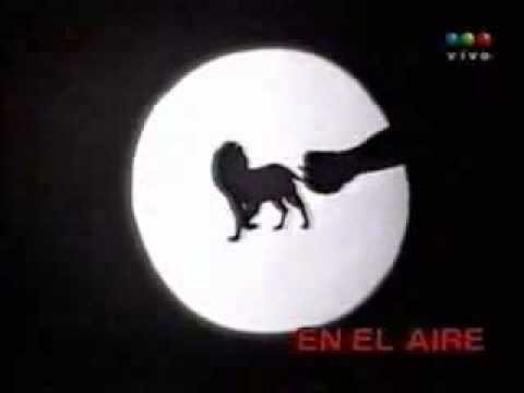 sombras chinescas - video match - El Leon cancino se despide del bosque