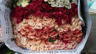 [인터넷꽃도매시장]뭉치장미꽃집 꽃집창업 부산꽃집 예쁜꽃…