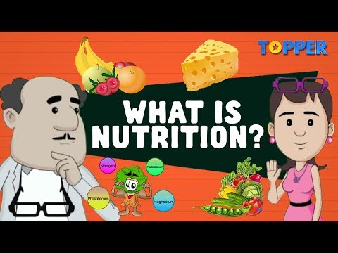 Sources of Food | Nutrition and Nutrients | Class 7th Biology |