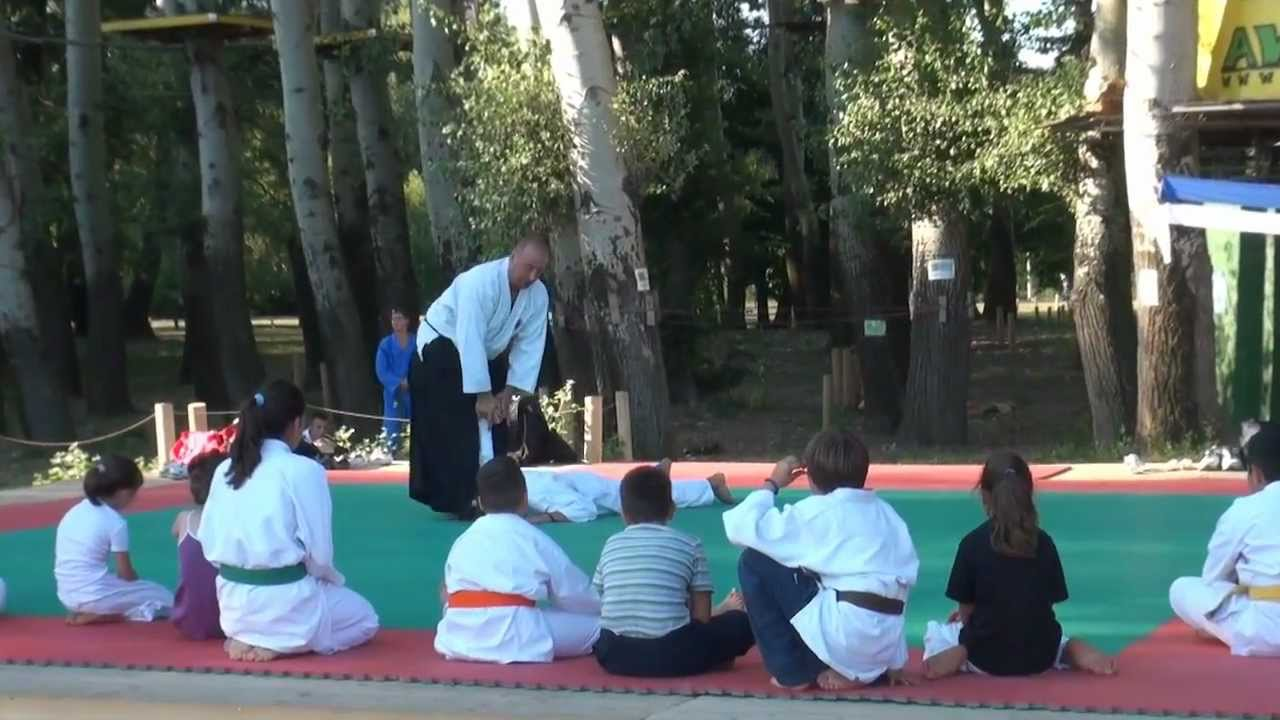 Javni aikido trening|Public aikido training