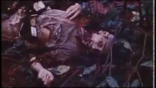 WW2  Intense Pacific Combat Footage Part 2!