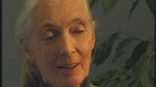 Jane Goodall at the Parliament of the World