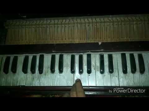 Pinjre ke panchi re-play harmonium
