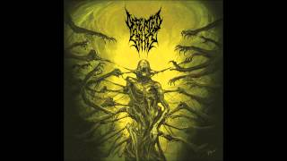Watch Defeated Sanity Verblendung video