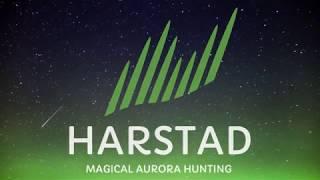 Magical Aurora Hunting in Harstad