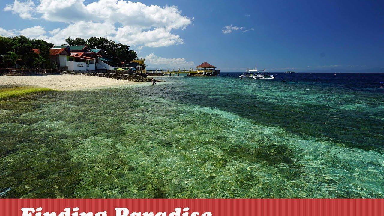 Savedra Beach Bungalows Best Budget Resorts In Moalboal Cebu
