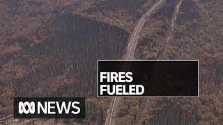 Bushfire threatens Sydney's water supply | ABC News