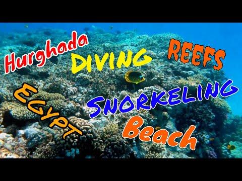 Sharm El Sheikh 4k Egypt Trip 2019 Hotel Hilton Sharks Bay