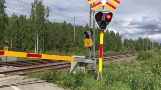 Level Crossing Korsträsk