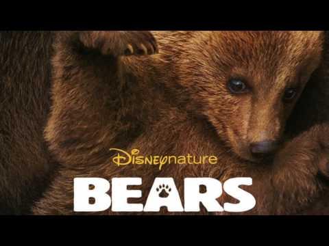 Bears (Score Suite)