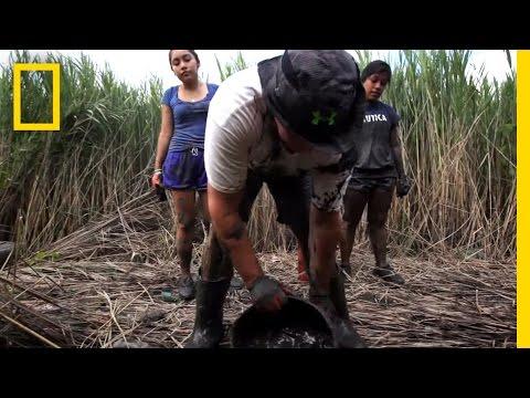 Students Kill Invasive 'Phrag' | National Geographic