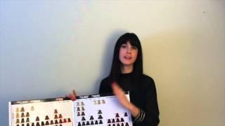 Goldwell Topchic Color Card Presentation