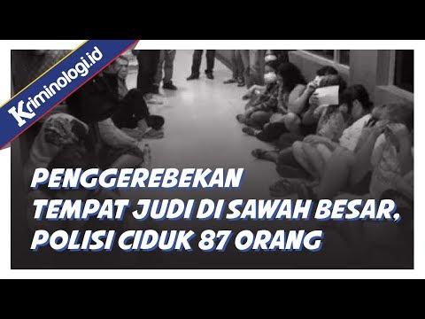Berita Terbaru: Polisi gerebek tempat perjudian di Sawah Besar