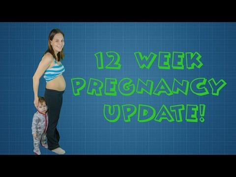 12 WEEKS PREGNANT - Nausea, Iron Deficiency,  Mood Swings & More !