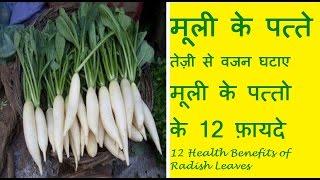 मूली के पत्तों से तेज़ी से वजन घटाए | मूली के पत्तो के 12 फ़ायदे | Health Benefits Of Radish Leaves