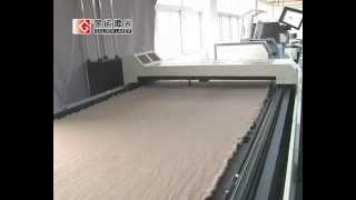 Textile Laser Cutting Machine Cjg-160300ld