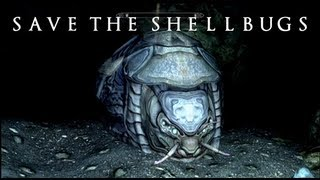 ★ Skyrim: Dawnguard - Where to Find Both Shellbugs (Shellbug Helmet Legendary) ★
