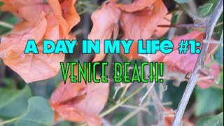 A Day In My Life: Venice Beach! Thumbnail