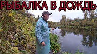 Рыбалка на поплавок в конце сентября 2021
