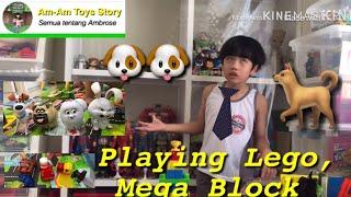 Ambrose playing LEGO, Mega block and Pets |AmAm Toys Story