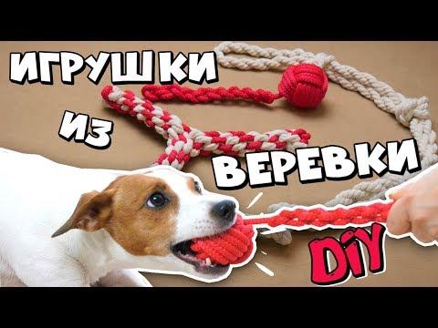 Игрушки для собак своими руками из веревки