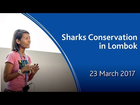 Public Lecture Series 2017 - Sharks Conservation in Lombok