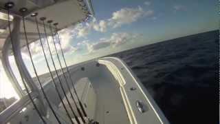 36 Yellowfin boat