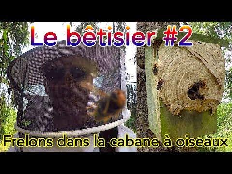 Le bêtisier d'Étienne #2