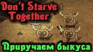 Don't Starve Together - ПРИРУЧАЕМ БИФАЛО