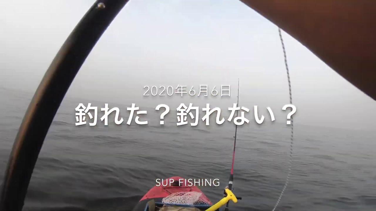 釣り 稲毛海浜公園