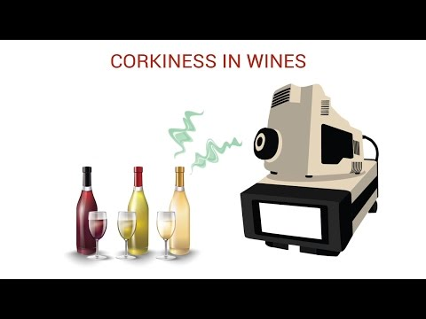 wine article Corkiness in Wines