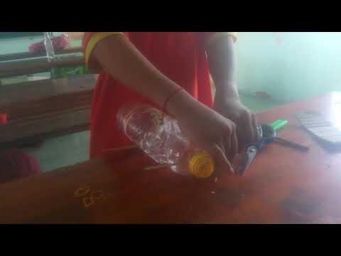 Cách làm bẫy chuột đơn giản chỉ bằng một chai dầu ăn