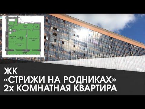 Стрижи на родниках; 2 х комнатная квартира в Новосибирске