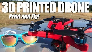 3D PRINTED RACING DRONE - Can it rip balls? 🙌🏻