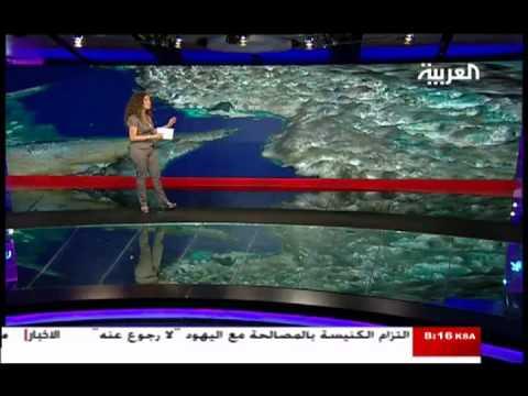 YouTube   مذيعة العربية ريما مكتبي